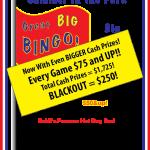 bingo 2017 poster
